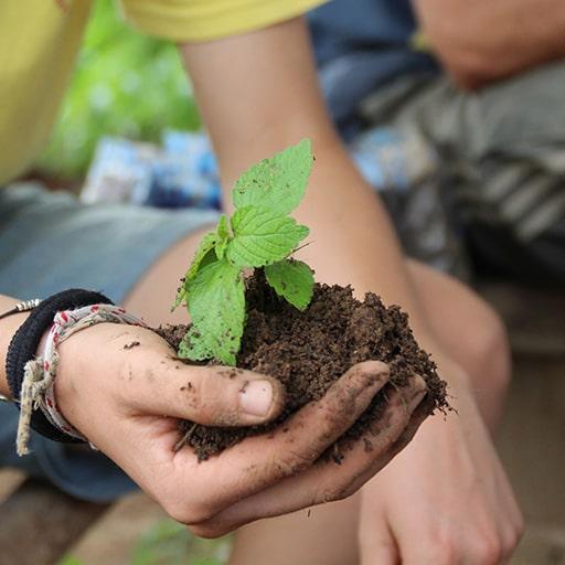 AgrinOvent - Promouvoir savoir-faire paysan